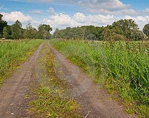 A Long Sandy Road Stock Photo - Image: 20756380