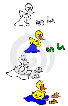 Little Duck With Bugs Stock Photos - Image: 20756773