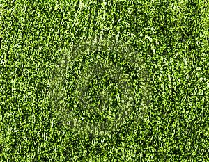 Green Texture Stock Photos - Image: 20765543
