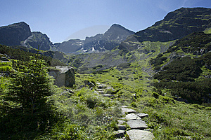 Path In The Mountains Stock Photo - Image: 20768080