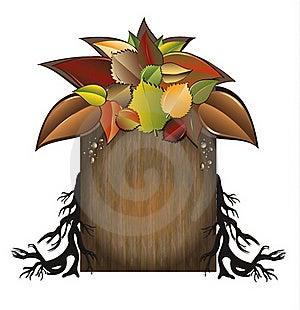 Bio Autumn Tree Garden  Royalty Free Stock Photography - Image: 20768267