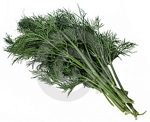 Dill Royalty Free Stock Image - Image: 20810446