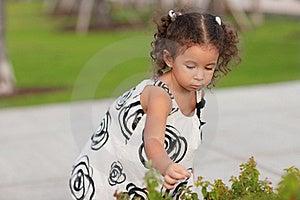 Child Picking Flowers Royalty Free Stock Photography - Image: 20820457