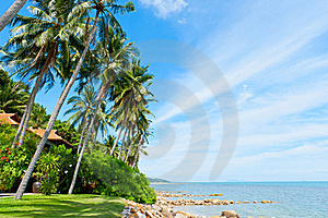 Beautiful House With Palm Trees On The Beach Stock Image - Image: 20827591