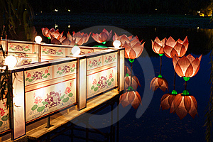 Lotus Light In Pond Royalty Free Stock Photography - Image: 20867557