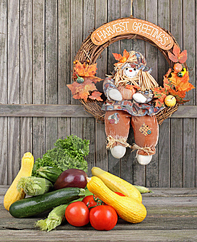 Harvest Vegetables Stock Photography - Image: 20872782
