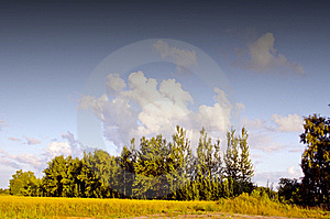 Summer Evening Landscape Royalty Free Stock Images - Image: 20881219