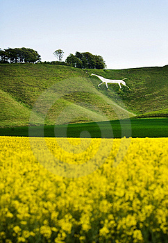 Cherhill White Horse, England Royalty Free Stock Photography - Image: 20890597
