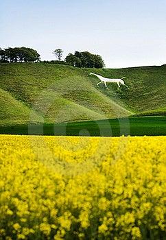 Cherhill White Horse, England Royalty Free Stock Photography - Image: 20890597