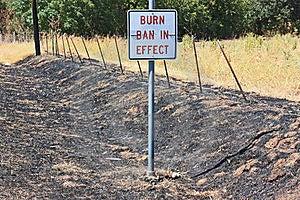 Burn Ban Royalty Free Stock Images - Image: 20892809