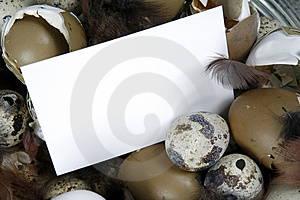 Nota De Blanc Fotos de archivo libres de regalías - Imagen: 2091448