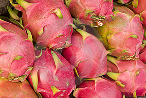 Dragon Fruit Stock Images - Image: 20901134