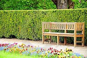 Wooden Bench In The Garden Stock Image - Image: 20901601