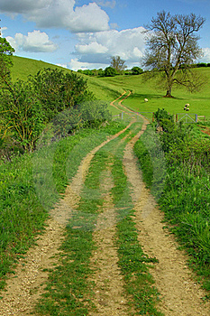 Countryside Trail Stock Photo - Image: 20927770