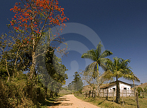 Dust Road Stock Image - Image: 20930441