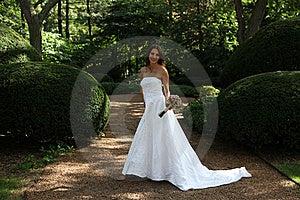 Bride Stock Photo - Image: 20961170