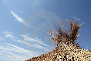 Under The Blue Sky Stock Images - Image: 20962904