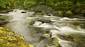 Rapid River Stock Images - Image: 20970754
