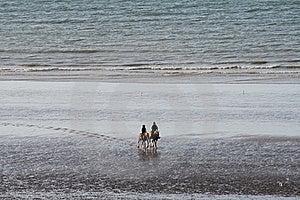 Horseback Riding Stock Images - Image: 20970804