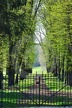 An Alley In Spring Royalty Free Stock Photo - Image: 20979485