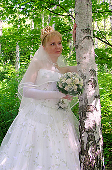 Bride 3 Free Stock Photography