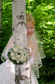 Bride 5 Free Stock Images