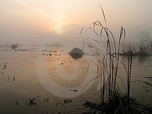 Matin brumeux sur le lac Tulchinskom. Photos stock