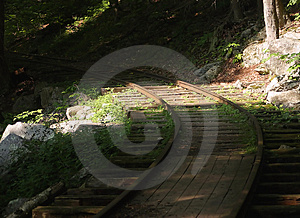 Logging Track Royalty Free Stock Images