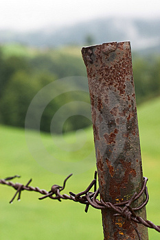 Barb Wire Free Stock Photo