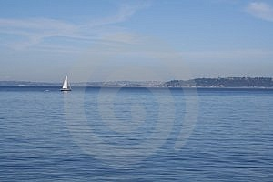 Sailboat In Puget Sound Free Stock Photo