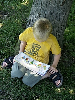 Reading boy Free Stock Photography
