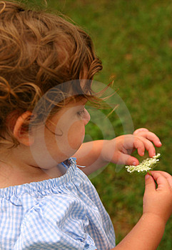 Child In The Garden Stock Photos