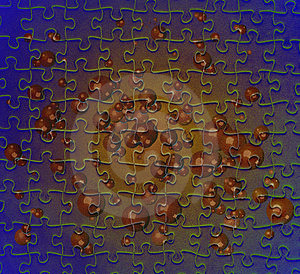 Puzzle With Brown Bubbles Stock Photography - Image: 2106192