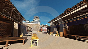 Japanese Castle Stock Images - Image: 21010464
