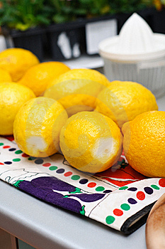 Fresh Lemons Stock Photo - Image: 21059480