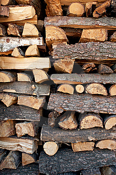 Fire Woods Royalty Free Stock Photography - Image: 21065007