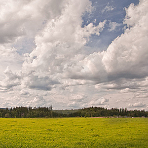 Green Meadow Royalty Free Stock Image - Image: 21073406