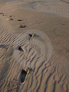 Footsteps In The Sand Royalty Free Stock Photos - Image: 21109058