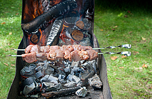 Preparation Of Shashlik Outdoor Stock Photography - Image: 21132672