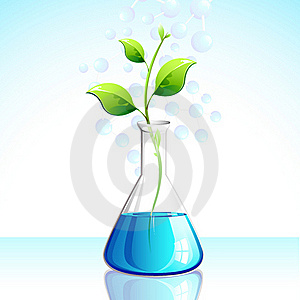 Biotechnological Plant Royalty Free Stock Photos - Image: 21178688