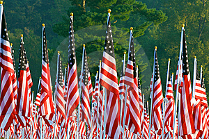 Flags In The Healing Fields For 9/11 Royalty Free Stock Photography - Image: 21189957