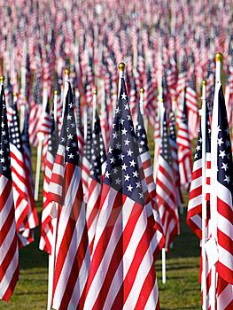 Flags In The Healing Fields For 9/11 Royalty Free Stock Photos - Image: 21189998