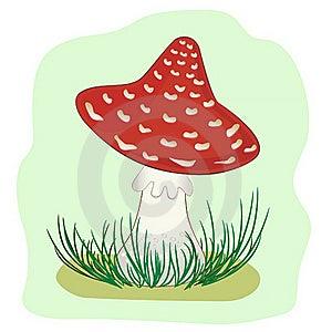 Mushroom Amanita Stock Image - Image: 21191321