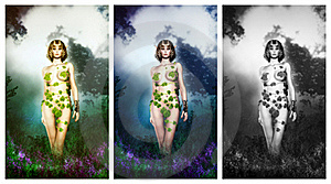 Poison Ivy Royalty Free Stock Images - Image: 21191719