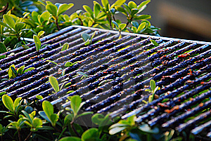 Barbecue Grating Royalty Free Stock Images - Image: 2128359