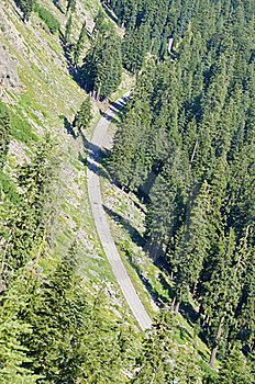 Road Through The Forest Stock Photos - Image: 21241823
