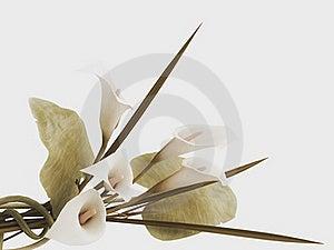 3d Callas Arrangement Stock Photography - Image: 21242792