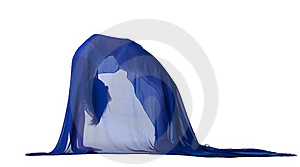 Woman Stand In Bridge Pose Under Blue Veil Royalty Free Stock Image - Image: 21267976