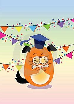 Graduation, Dog Stock Images - Image: 21284614