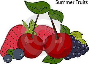 Fruits Stock Photography - Image: 21299492
